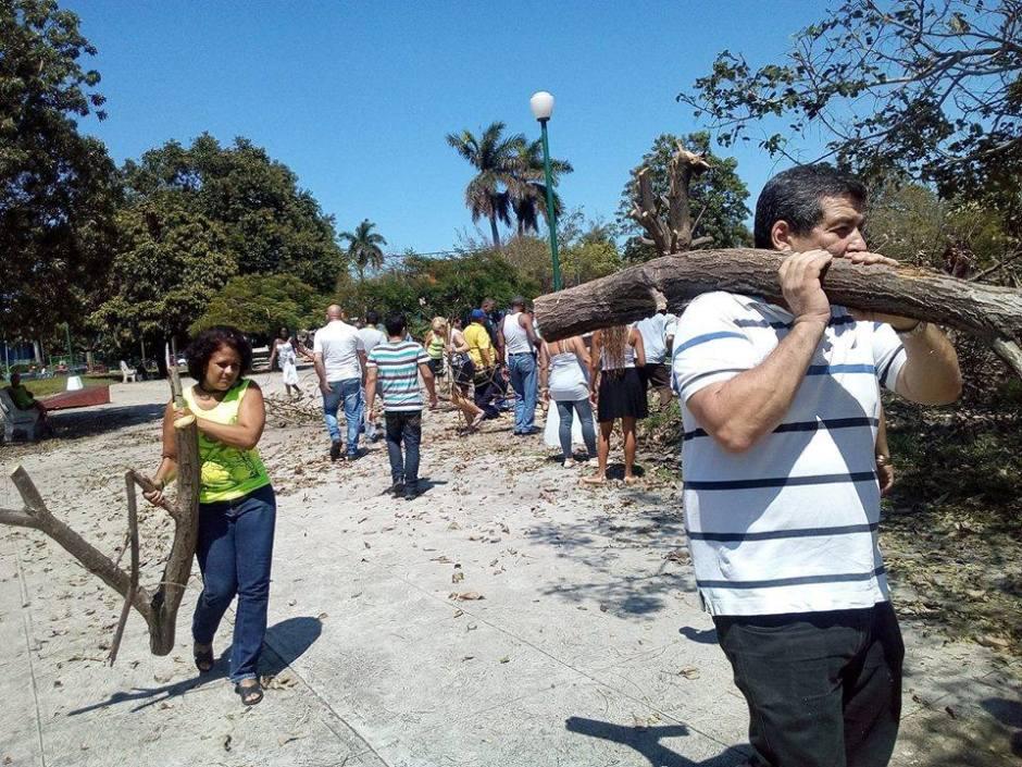 Iroel Sánchez y vecinos limpian parques